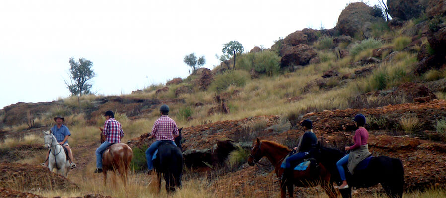 Horse riding in calitzdorp